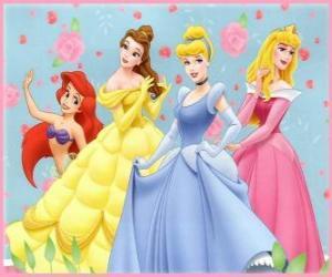 Disney-Prinzessinnen puzzle