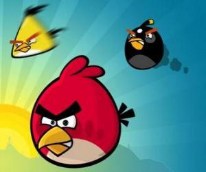 Drei der Vögel von Angry Birds puzzle