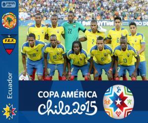 Ecuador Copa America 201 puzzle