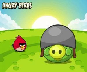 Ein kleiner roter Vogel neben einem Schwein mit Helm puzzle