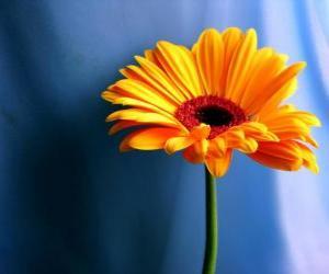 Eine einfache Blume, schönes Geschenk für Ihre Mutter puzzle