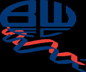 Emblemen von Bolton Wanderers F.C. puzzle
