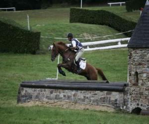 Equestrian Eventing ist ein harter Wettbewerb puzzle