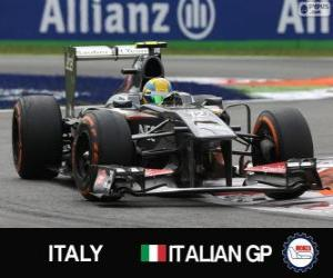 Esteban Gutiérrez - Sauber - Monza, 2013 puzzle
