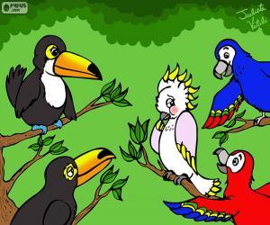 Fünf Vögel von Julieta Vitali puzzle