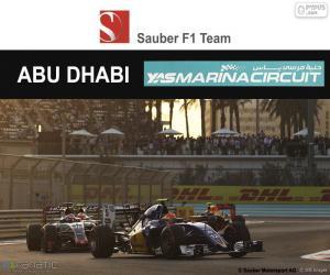 Felipe Nasr, GP von Abu Dhabi 2016 puzzle