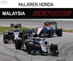 Fernando Alonso, GP von Malaysia 2016 puzzle