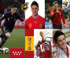 Fernando Torres (Es machte uns träumen) Spanish National Team nach vorne puzzle