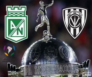 Finale Copa Libertadores 2016 puzzle