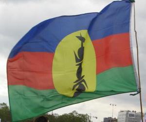 Flagge von Neukaledonien puzzle