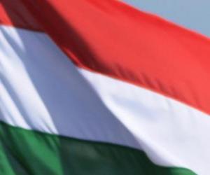 Flagge von Ungarn puzzle