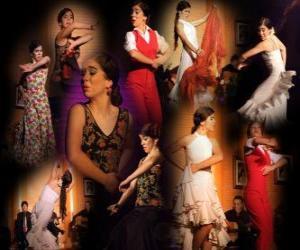 Flamenco-Tänzerin. Flamenco hat seinen Ursprung in der Folklore der Zigeuner und der populären Kultur von Andalusien, Spanien puzzle