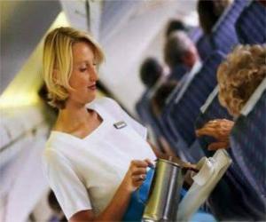 Flugbegleiter puzzle