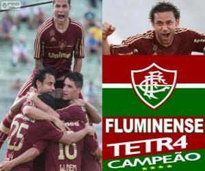 Fluminense Football Club Champion der 2012 brasilianischen Meisterschaft puzzle