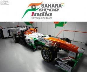 Force India VJM06 - 2013 - puzzle