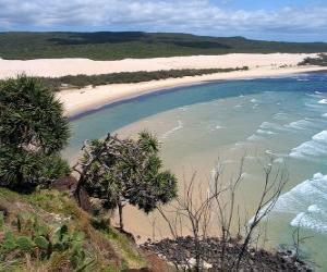 Fraser Island, der sandigen Insel ist 122 Kilometer lang und ist der weltweit größte seiner Art. Australien. puzzle