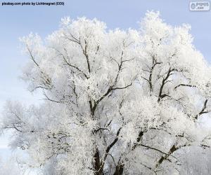 Frostbeschichteter Baum puzzle