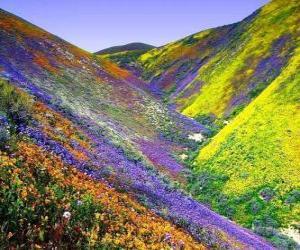 Frühling landschaft puzzle