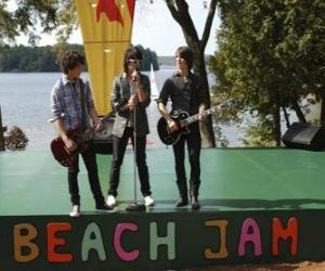 Geschwister Shane (Joe Jonas), Nate (Nick Jonas) und Jason Gray (Kevin Jonas) Gesang auf dem Camp Rock Beach Jam puzzle