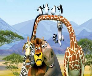 Gloria der hippo, die giraffe Melman, Alex der löwe, Marty das zebra mit den anderen protagonisten der abenteuer puzzle