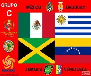 Gruppe C, Copa América Centenario puzzle