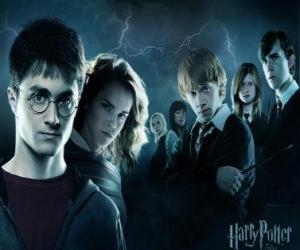 Harry Potter mit seinen freunden puzzle