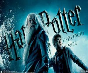 Harry Potter und der Halbblutprinz puzzle