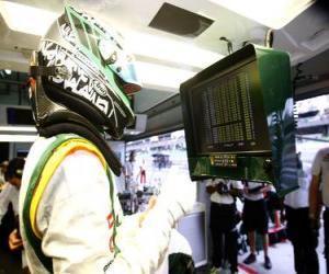 Heikki Kovalainen - Lotus - Sepang 2010 puzzle