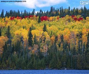 Herbstfarben puzzle