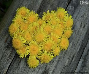Herz aus Löwenzahn puzzle