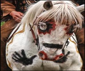 Indian pferd  puzzle