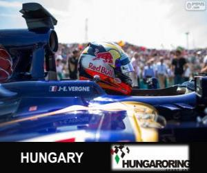 Jean-Eric Vergne - Toro-Rosso - Hungaroring, 2013 puzzle