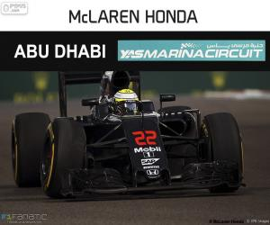 Jenson Button, GP von Abu Dhabi 2016 puzzle