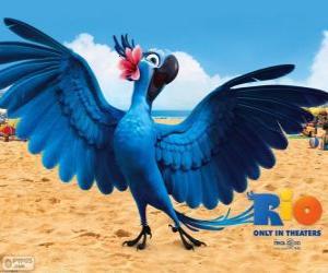 Jewel ist eine schöne weibliche Aras in dem Film Rio puzzle
