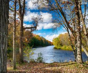 Jumbo-River, USA puzzle