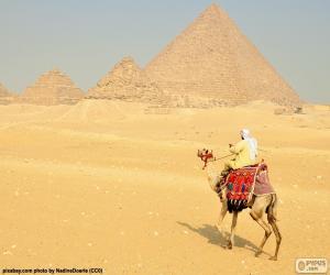 Kamel vorderen Pyramiden puzzle