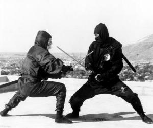 Kampf zwischen zwei ninjas puzzle