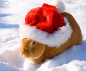 Kaninchen mit Weihnachtsmütze puzzle