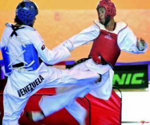 Karate - Zwei karateken üben puzzle