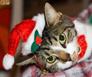 Katze mit einer Nikolausmütze puzzle