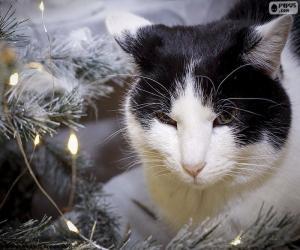 Katze zu Weihnachten puzzle