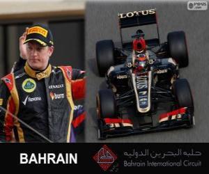Kimi Räikkönen - Lotus - 2013 Bahrain Grand Prix, 2 º klassifiziert puzzle