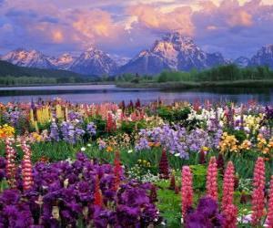 Landschaft im frühling puzzle
