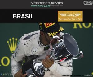 Lewis Hamilton, Grand Prix Brasilien 2016 puzzle