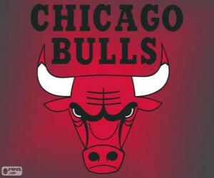 Logo Chicago Bulls, NBA-Team. Central Division, Eastern Conference puzzle
