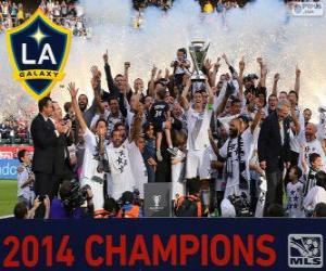 Los Angeles Galaxy, MLS 2014 Meister puzzle
