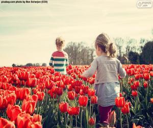 Mädchen zwischen Tulpen puzzle