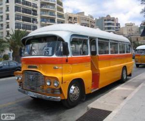 Malta bus puzzle