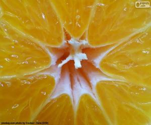 Mandarinen im Inneren puzzle