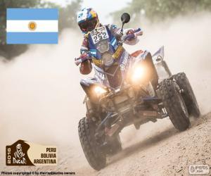 Marcos Patronelli, Dakar 2016 puzzle